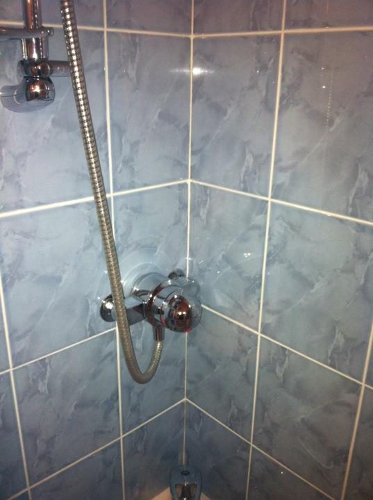 Shower tiles and grout after