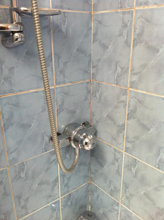 Shower tiles and grout before